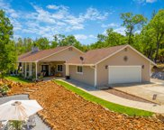 28945 Fair Thee Well Ln, Whitmore image