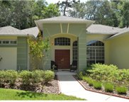 99 Winding Oaks Lane, Oviedo image