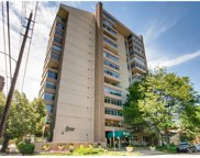 1313 North Williams Street Unit 1204, Denver image