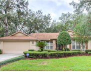 1131 Crown Isle Circle, Apopka image
