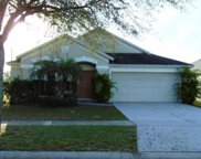 12429 Cedarfield Drive, Riverview image