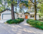 17290  Placer Hills Road, Meadow Vista image