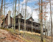1680 Lower Hatchers Creek Road, Stanton image