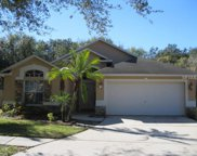 7113 Colony Pointe Dr, Riverview image