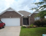 480 Oak Leaf Cir, Pell City image