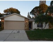 12838 Tallowood Drive, Riverview image