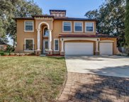 3850 CARDINAL OAKS CIR, Orange Park image