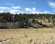 1228 Anges Drive, Cripple Creek image