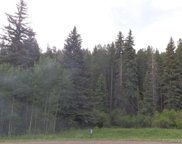 27736 Stagecoach Road, Conifer image