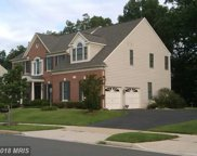 43348 ST ANDREWS STREET, Chantilly image