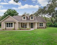 6806 Misty Hollow Court, Seffner image