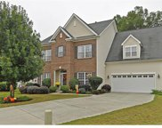 13919  Mill River Lane, Charlotte image
