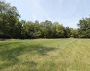 3.73 +/- Acres On Rocky Road, St Paul image