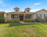 26920 Brandiff Road E, Myakka City image