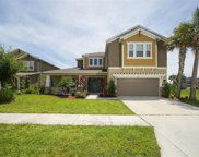 5978 Anise Drive, Palmer Ranch image