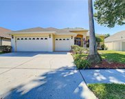 6949 Cohasset Circle, Riverview image