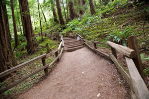 Go hiking near Santa Clara County homes.