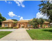 9102 Great Heron Circle, Orlando image