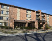 201 Lake Hinsdale Drive Unit 306, Willowbrook image