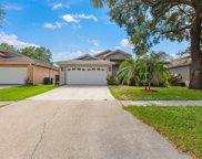 10839 Peppersong Drive, Riverview image
