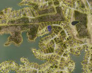 513 Links Pointe Court, Chapin image