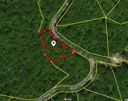139 Indian Pipe Trail, Landrum image
