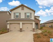 100 Blueberry Cove, Springville image