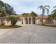 6872 Trail Blvd, Naples image