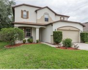 16725 Rising Star Drive, Clermont image