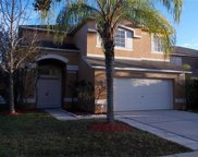 18205 Sandy Pointe Drive, Tampa image