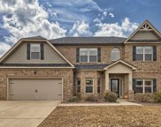 233 Cayden Court, Chapin image