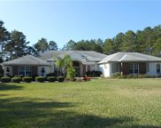 11137 Woodland Waters Boulevard, Brooksville image