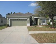 11440 Callaway Pond Drive, Riverview image