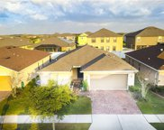 11225 Brighton Knoll Loop, Riverview image