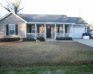 1704 Tomoka Drive, Charleston image