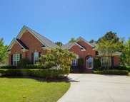 2736 Waterpointe Circle, Mount Pleasant image