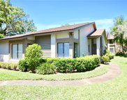 1831 Cypress Trace Drive, Safety Harbor image