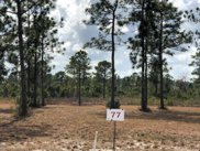 8643 Hammocks Cove Trail Ne, Leland image