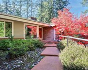 3055 238th Ave SE, Sammamish image