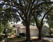 7723 Whitebridge Glen, University Park image