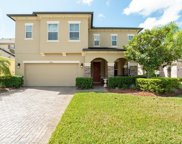 10924 High Bush Court, Orlando image