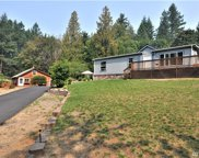 3917 Reeves Rd SW, Longbranch image