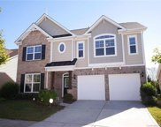 8209  Willow Branch Drive, Waxhaw image