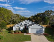 1517 Dawley Court, Brandon image