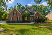 201 Lookout Pointes Drive, Chapin image