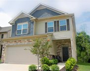 1723  Trentwood Drive, Fort Mill image