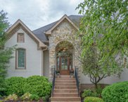 13722 Diving Hawk  Crossing, Mccordsville image
