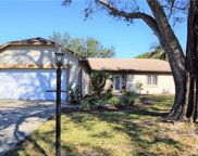 9204 Cypresswood Circle, Tampa image