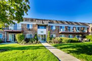 10381 Dearlove Road Unit 1E, Glenview image