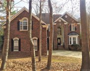 12630  Preservation Pointe Drive, Charlotte image